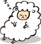 すやすや眠る羊
