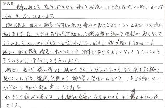 カポス_鍼治療_感想_muraishi_2015