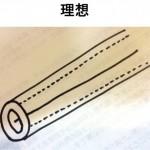 群馬研修日記・坂口編(16) 最高の鍼メーカーはどこかの詳細へ